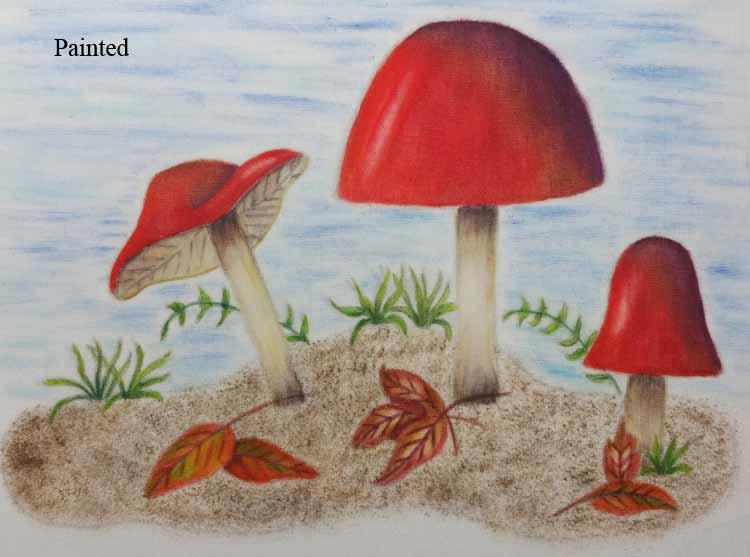 Derwent Mushroom Quilt Workshop
